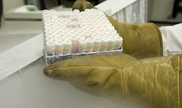 Primer banco de células proneuronales de España para enfermedades mentales