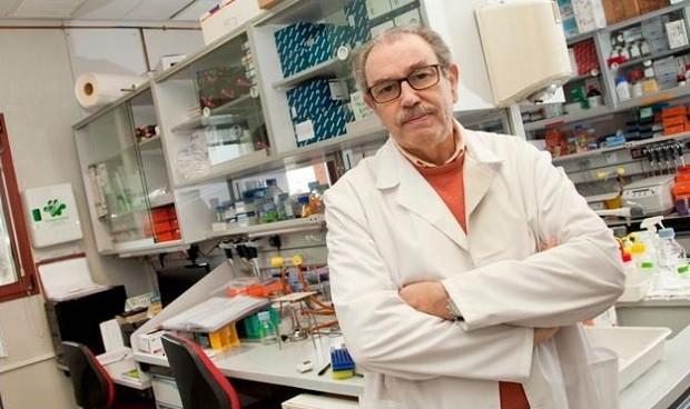 Primera vacuna Covid española: administración con parches a finales de 2021