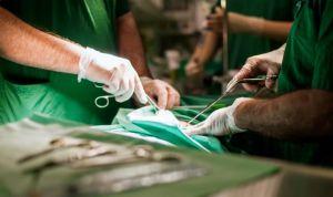 Realizan con éxito el primer trasplante de pene y escroto en el mundo