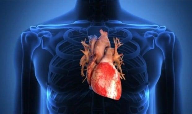 Relacionan la hormona del estrés con las enfermedades cardíacas