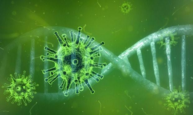 Científicos desvelan cómo las mutaciones Covid evaden a los anticuerpos