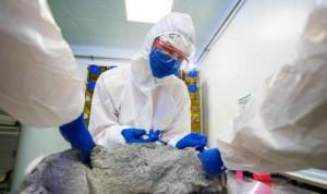 Rusia crea Carnivac-Cov, la primera vacuna Covid para animales