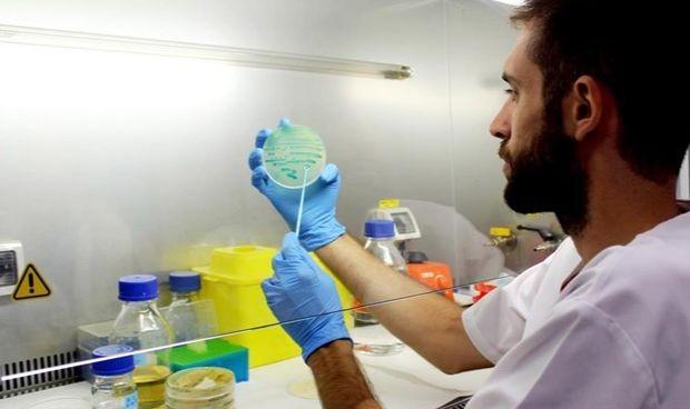 Salud confirma un segundo caso de listeria en Baleares