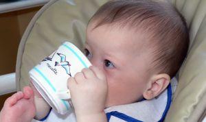 Seis farmacias retiran 81 lotes de leche Lactalis contaminada con salmonela
