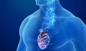 Nuevo método de control de daño causado por el síndrome del corazón roto