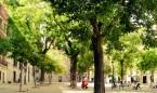 Tener árboles en la calle y cerca de casa reduce el riesgo de depresión