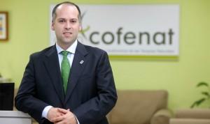 Terapias naturales: 10.500 empresas y 62.000 profesionales en España