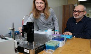 Un biosensor óptico detecta un marcador biológico en heridas crónicas