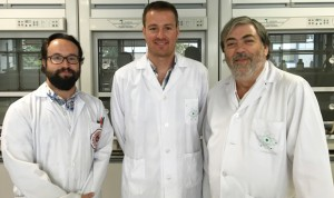 Un cambio artificial del ADN, paso previo para su uso biotecnológico