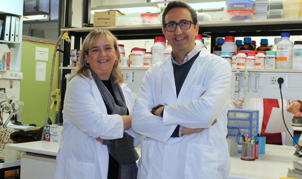 Un derivado de �cido graso reduce la muerte neuronal en el alzh�imer
