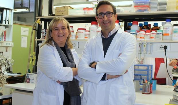 Un derivado de ácido graso reduce la muerte neuronal en el alzhéimer