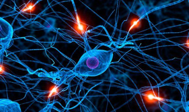 Un 'ejército' de nanopartículas mejora la absorción de fármacos del cerebro