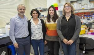 Un equipo español crea 'mini-hígados' para investigar enfermedades raras