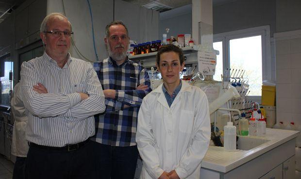 Un estudio del Ciber abre la puerta al uso de péptidos contra el cáncer