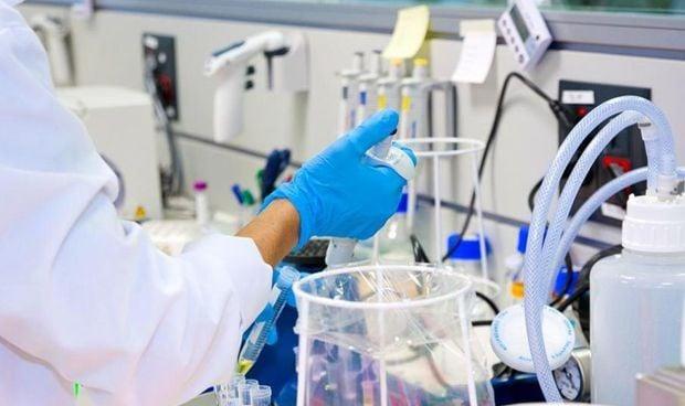 Un grupo de investigadores gallegos descubre cómo frenar la artrosis