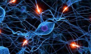 Un nuevo método mejora la identificación de trastornos cerebrales