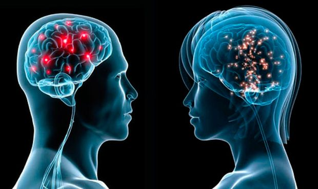 Un nuevo proceso previene la muerte neuronal que causa el alzh�imer