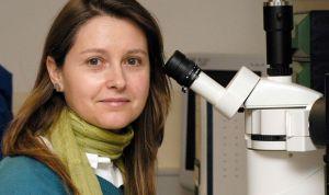 Un nuevo sistema de cribado selecciona fármacos contra la leucemia infantil