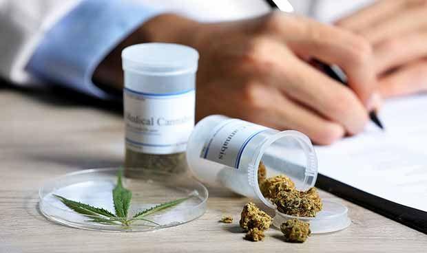Un título universitario estudia los beneficios medicinales de la marihuana