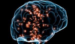 Una aguja ultrafina consigue administrar fármacos directamente al cerebro