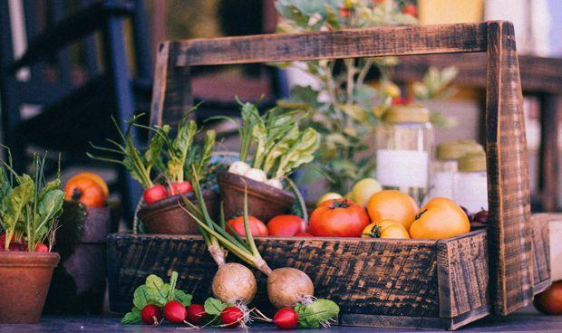 Una dieta saludable previene hasta el 40% de tumores de colon distal