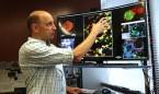 Una función 'sorpresa' de los pulmones: crean células sanguíneas