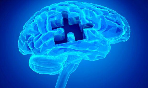 Una hormona revierte la p�rdida de memoria relacionada con la edad