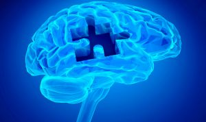 Una hormona revierte la pérdida de memoria relacionada con la edad