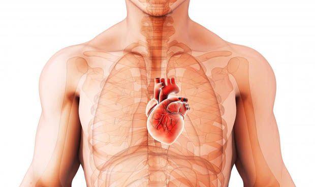 Una molécula, la relación entre la diabetes y la insuficiencia cardiaca