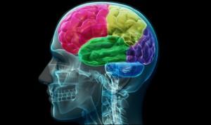 Una nueva técnica permite 'despertar' al cerebro tras un coma