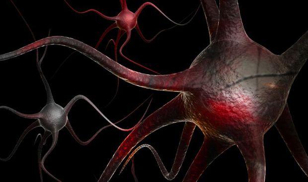 Una nueva terapia génica de células CART mejora la protección contra el VIH