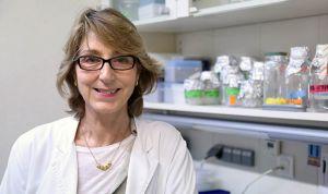 Una proteína del riñón, nueva diana terapéutica del síndrome metabólico
