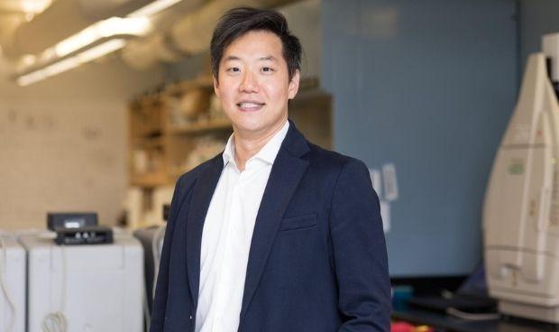 Una proteína protege las células pancreáticas en diabetes tipo 1
