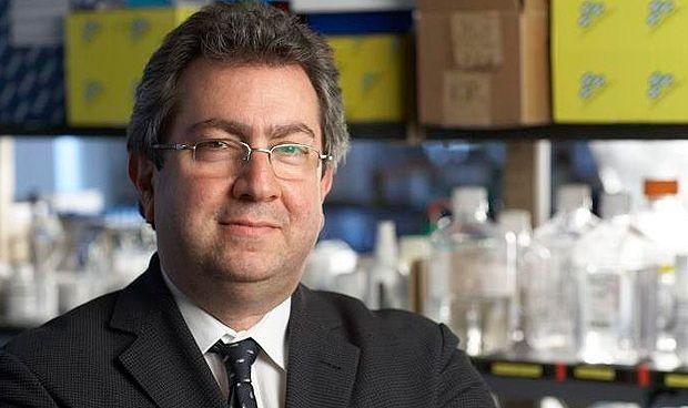 Una terapia génica mejora un 25% la función cardiaca tras una insuficiencia