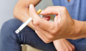 Unos pequeños gusanos, claves para descubrir la adicción al tabaco