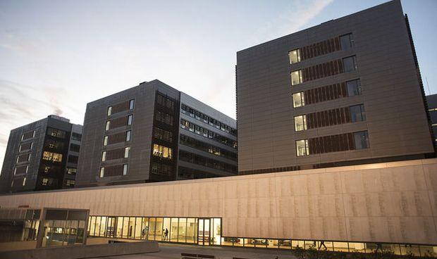 Valdecilla inaugura un banco de cerebros para proyectos de investigaci�n