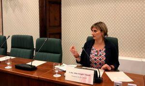 Vergés anuncia una cumbre para abordar la necesidad de los profesionales