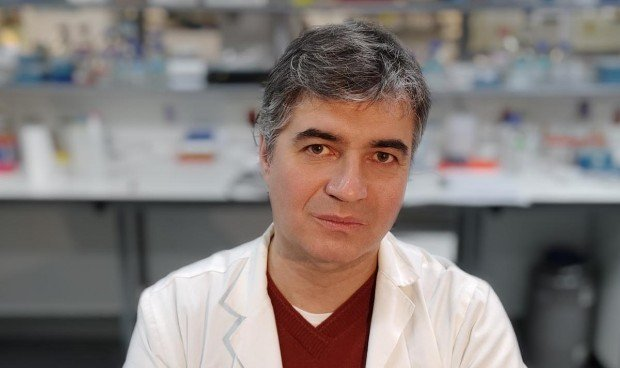 Vitamina C: descubren sus beneficios en tumores resistentes a quimioterapia