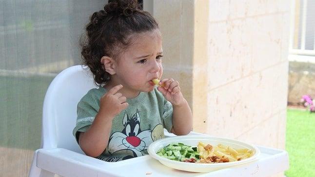 ¿Qué alimentación complementaria es necesaria durante el primer año de vida?