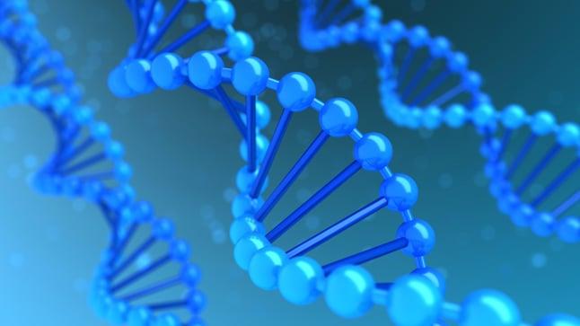 Genes BRCA1 y BRCA2