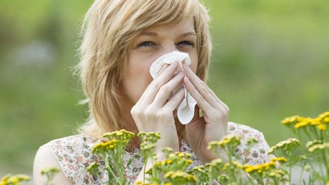 Causas, síntomas y tratamiento de las alergias