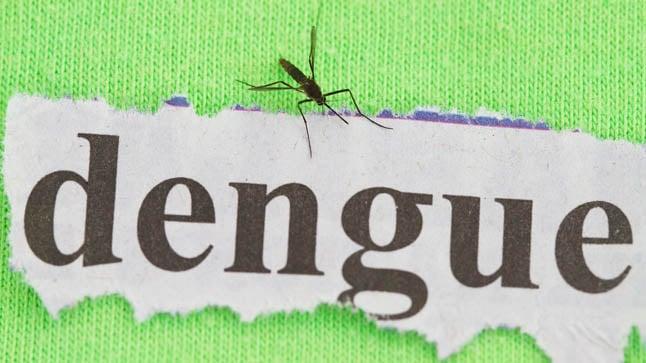 ¿Puede prevenirse el dengue