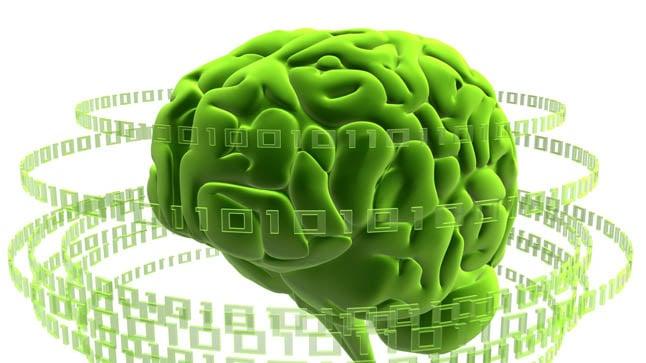 ¿Cómo se diagnostica la encefalopatía hepática?