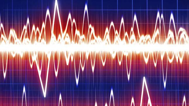 ¿Cómo se diagnostica la epilepsia?