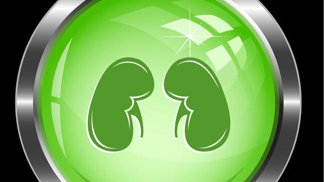 ¿Cómo se diagnostica la insuficiencia renal crónica?