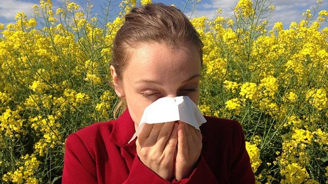 Tipos de pruebas de la alergia