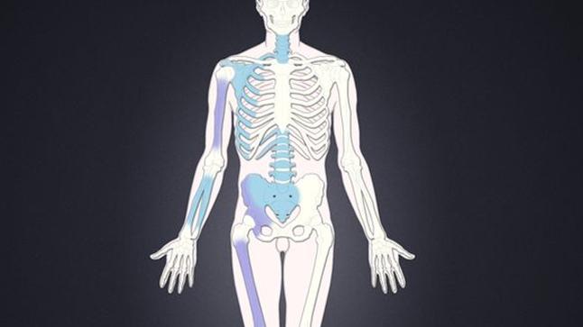 Tipos, causas y tratamiento de los sarcomas de tejidos blandos