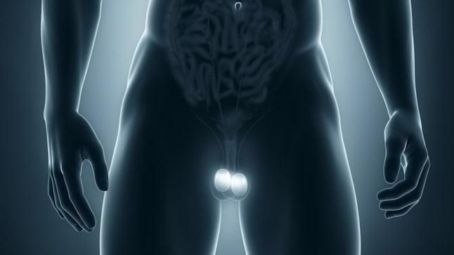 ¿Cómo se diagnostica la torsión testicular?